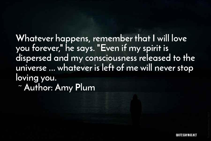 Never Stop Loving You Quotes By Amy Plum