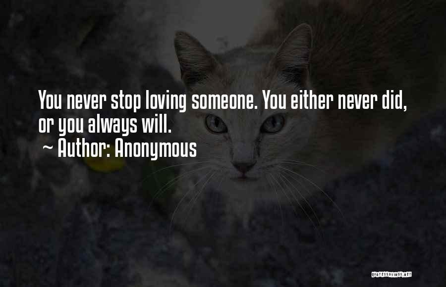 Never Stop Loving You Quotes By Anonymous