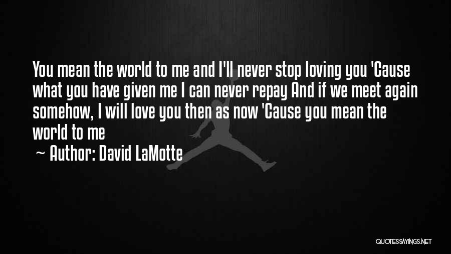 Never Stop Loving You Quotes By David LaMotte