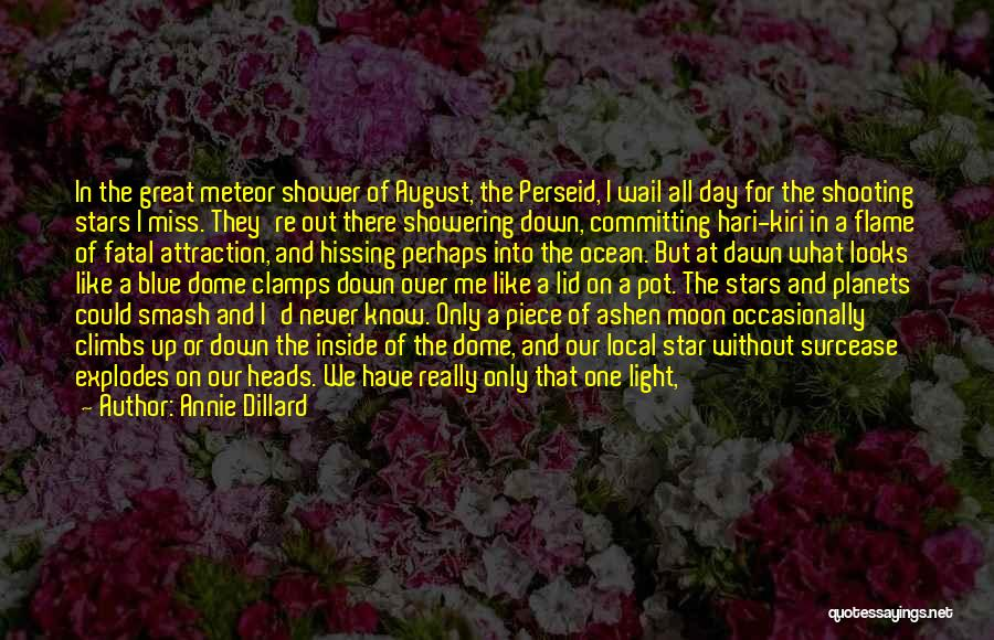 Never Walk Away Quotes By Annie Dillard