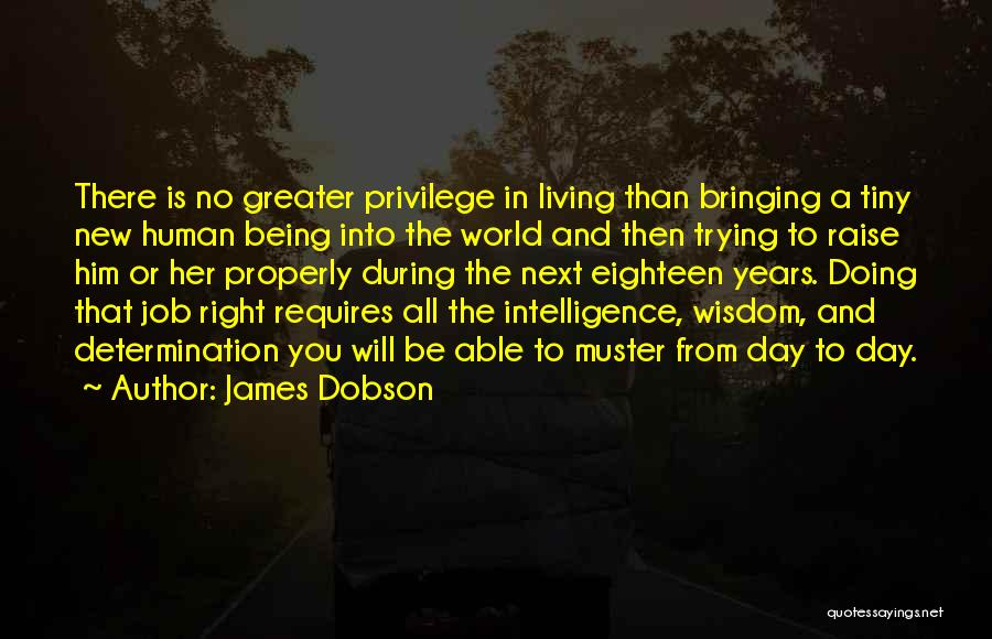 New Day New Job Quotes By James Dobson