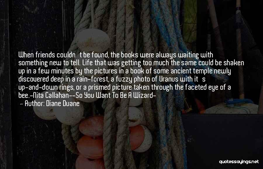 New Friends In Your Life Quotes By Diane Duane