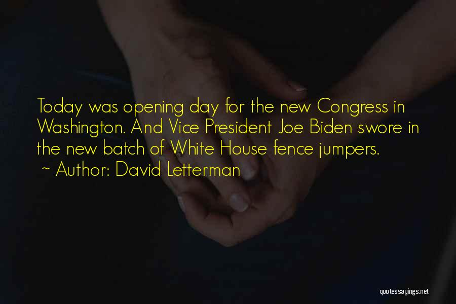 New House Opening Quotes By David Letterman