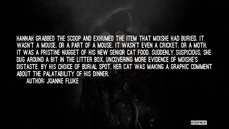 New Item Quotes By Joanne Fluke