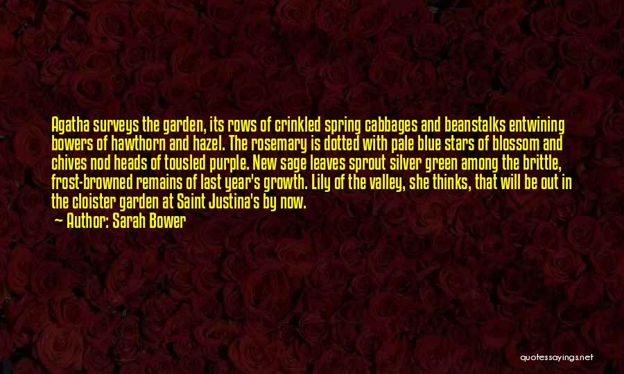 New Year Garden Quotes By Sarah Bower