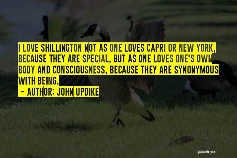 New York And Love Quotes By John Updike