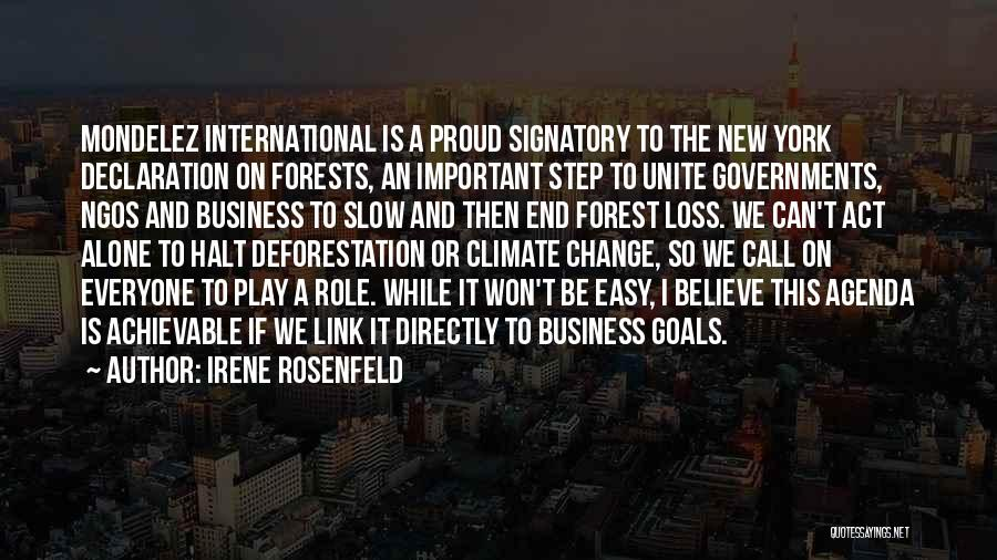 Ngos Quotes By Irene Rosenfeld