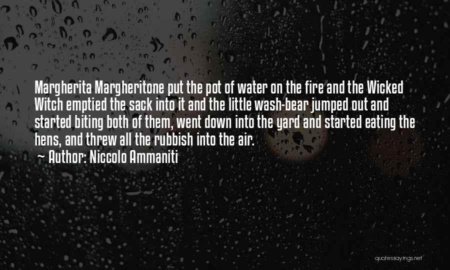 Niccolo Ammaniti Quotes 1787266