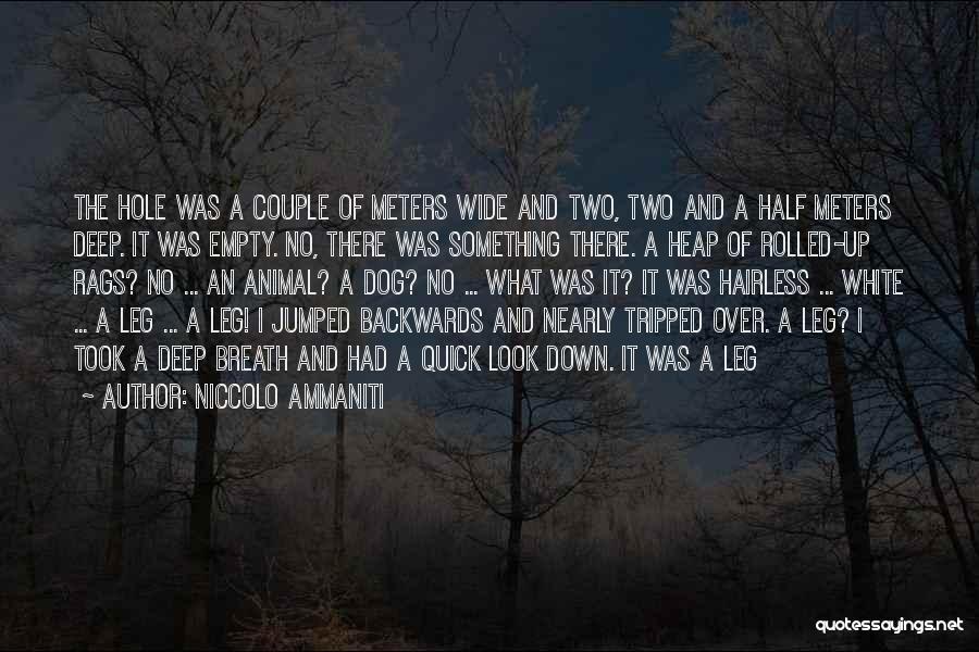 Niccolo Ammaniti Quotes 2147386