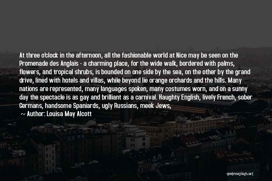 Nice Chatting Quotes By Louisa May Alcott