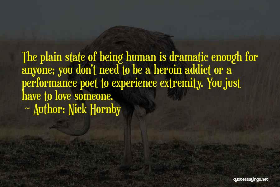Nick Hornby Quotes 2267097