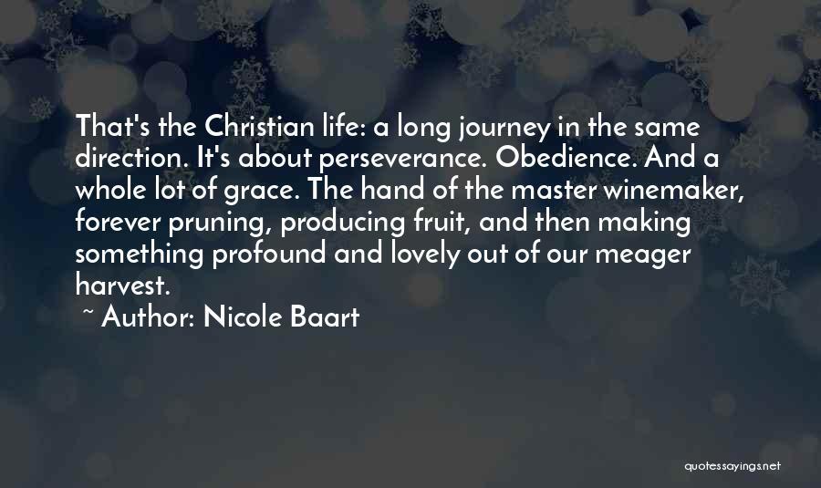 Nicole Baart Quotes 880034