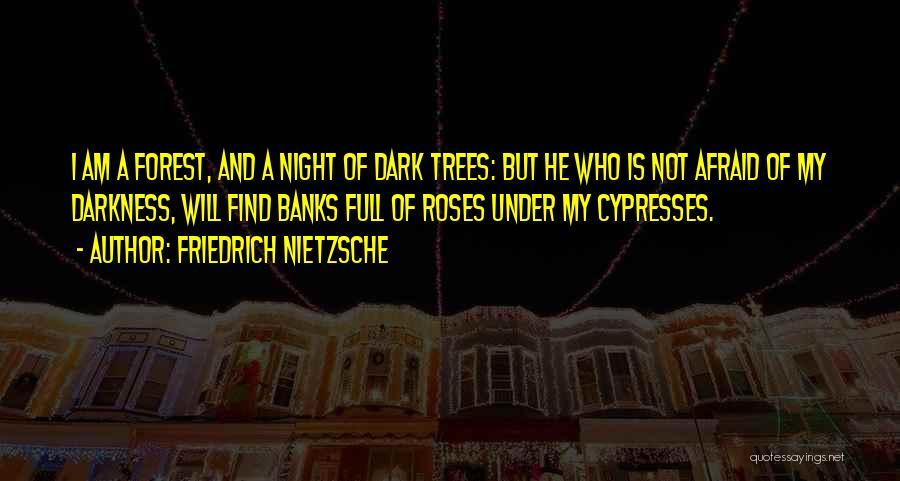 Night Darkness Quotes By Friedrich Nietzsche