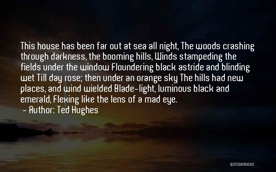 Night Darkness Quotes By Ted Hughes