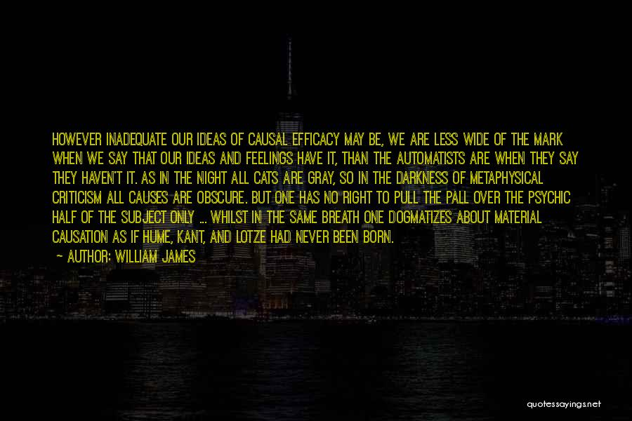 Night Darkness Quotes By William James