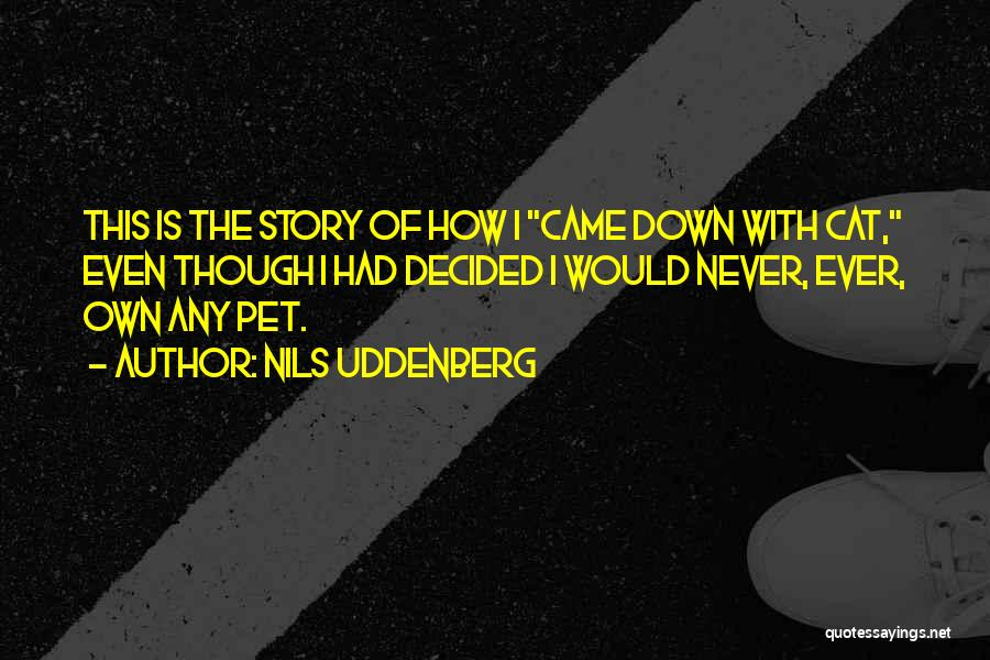 Nils Uddenberg Quotes 387351