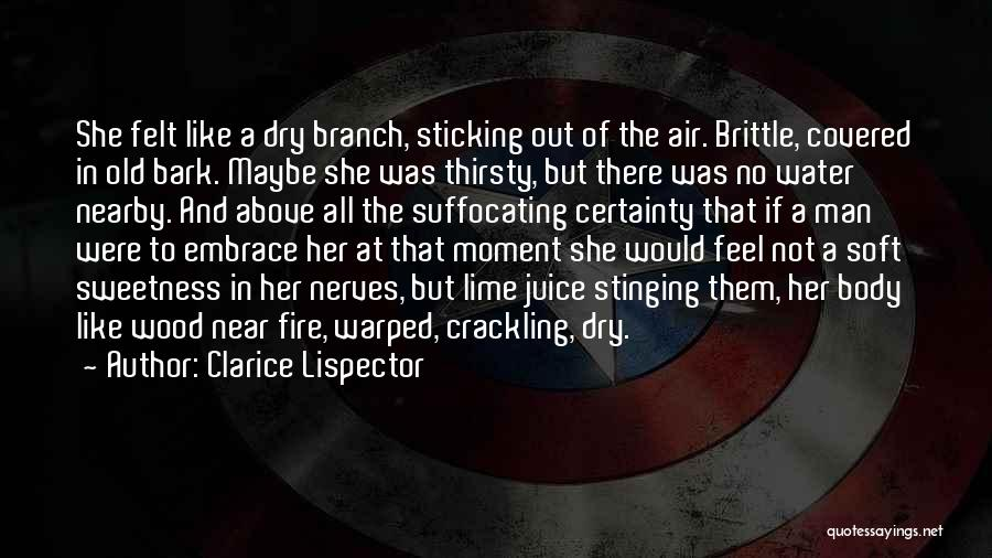 No Bark Quotes By Clarice Lispector