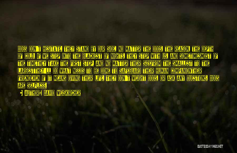 No Bark Quotes By David Weiskircher
