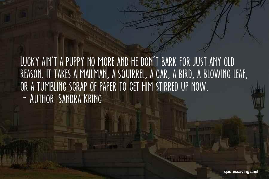 No Bark Quotes By Sandra Kring