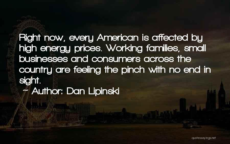 No End In Sight Quotes By Dan Lipinski