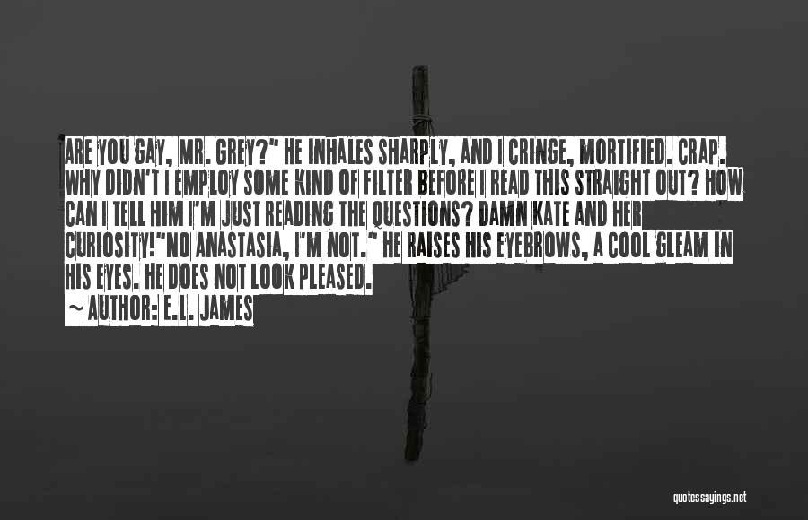 No Eyebrows Quotes By E.L. James