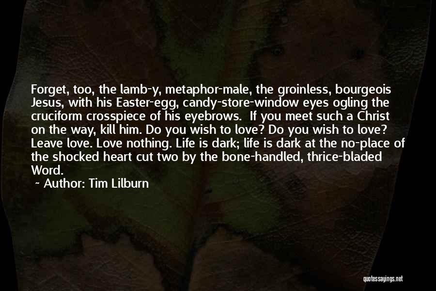 No Eyebrows Quotes By Tim Lilburn
