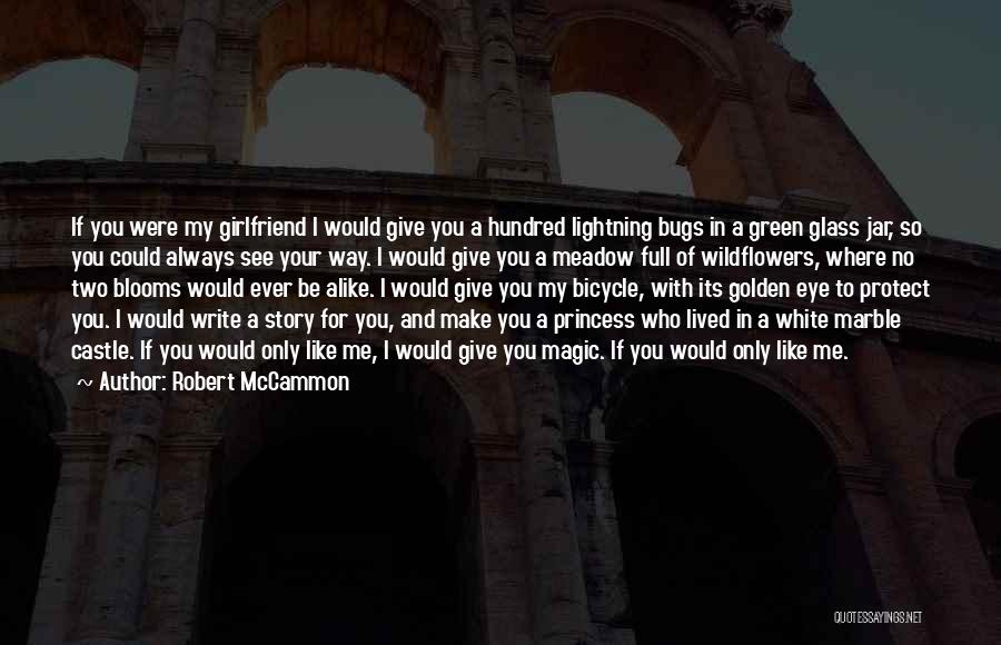 No Girlfriend Quotes By Robert McCammon