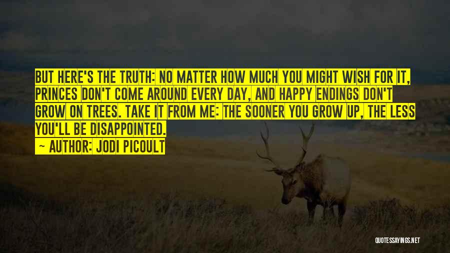 No Happy Endings Quotes By Jodi Picoult