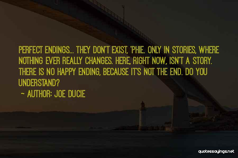 No Happy Endings Quotes By Joe Ducie
