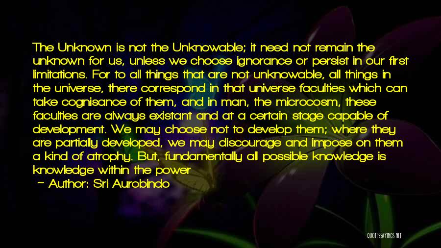 No Humanity Quotes By Sri Aurobindo