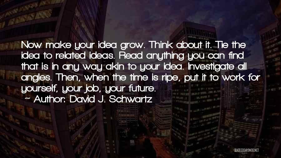 No Idea About Future Quotes By David J. Schwartz