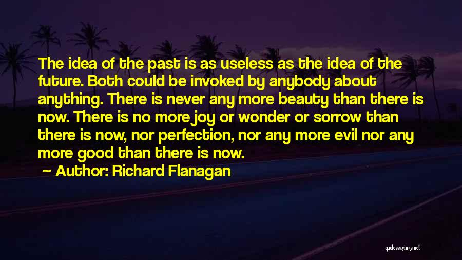 No Idea About Future Quotes By Richard Flanagan