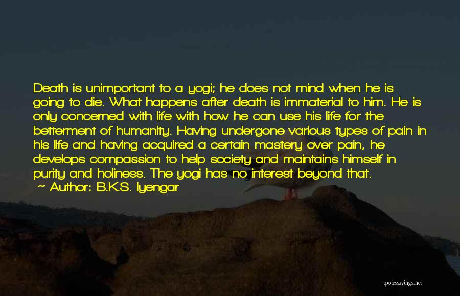 No Life After Death Quotes By B.K.S. Iyengar