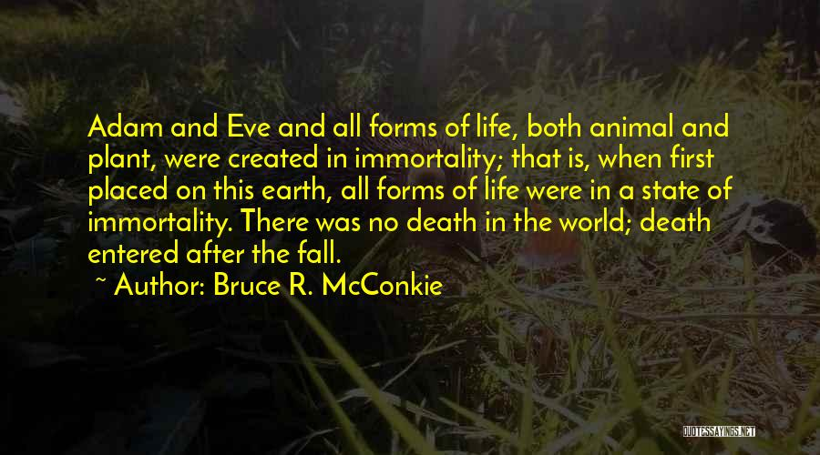 No Life After Death Quotes By Bruce R. McConkie