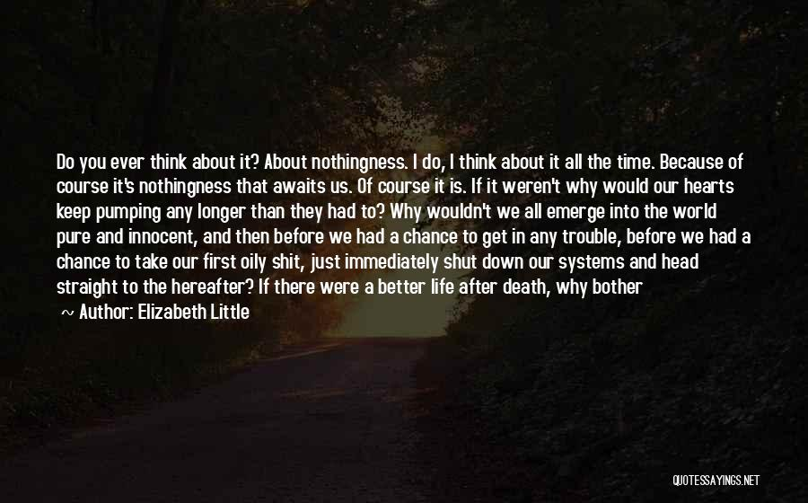No Life After Death Quotes By Elizabeth Little