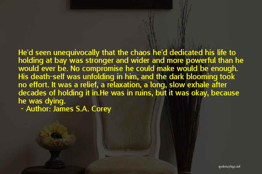 No Life After Death Quotes By James S.A. Corey