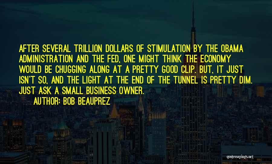 No Light At The End Of The Tunnel Quotes By Bob Beauprez
