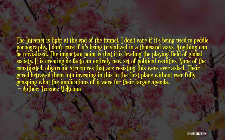 No Light At The End Of The Tunnel Quotes By Terence McKenna