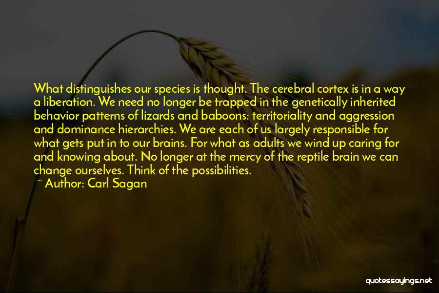 No Longer Caring Quotes By Carl Sagan