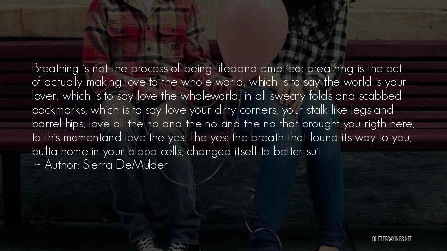 No Love Found Quotes By Sierra DeMulder