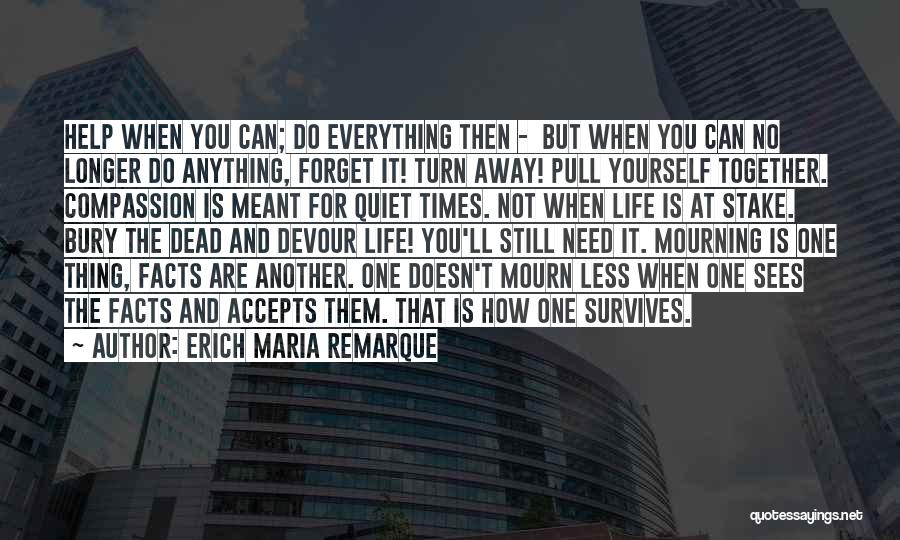 No One Can Help You But Yourself Quotes By Erich Maria Remarque