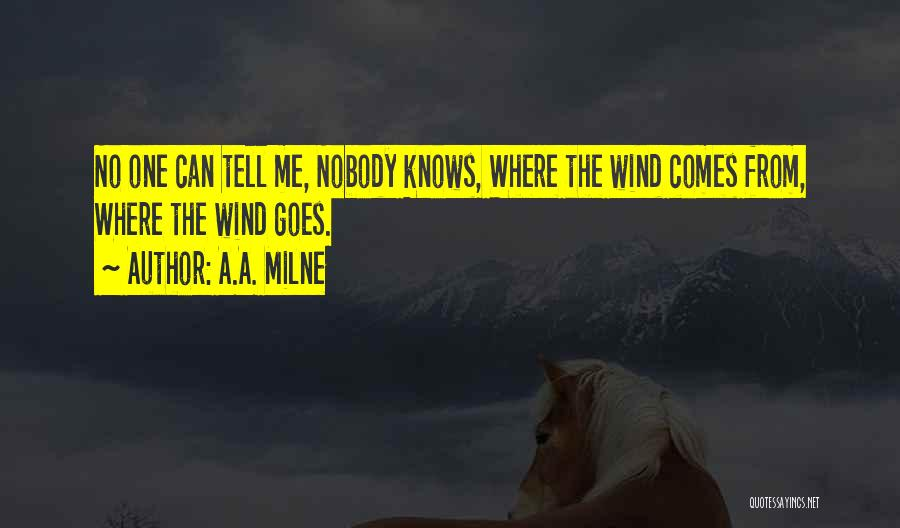 No One Knows Me Quotes By A.A. Milne