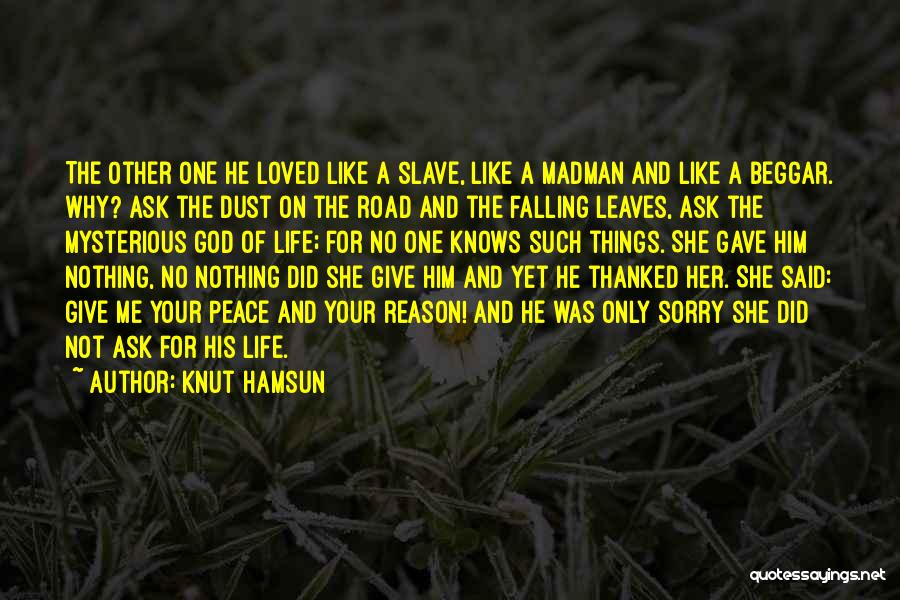 No One Knows Me Quotes By Knut Hamsun