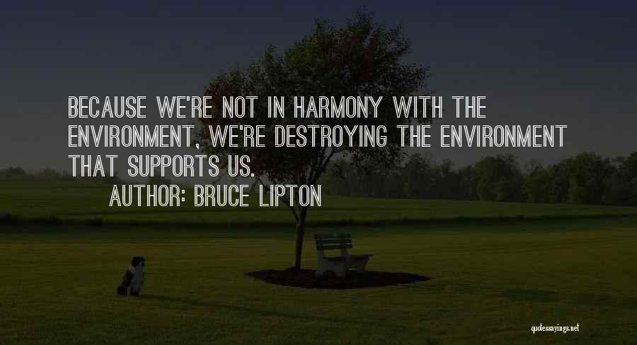 No One Supports You Quotes By Bruce Lipton
