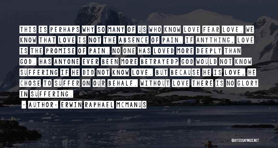 No Pain No Glory Quotes By Erwin Raphael McManus