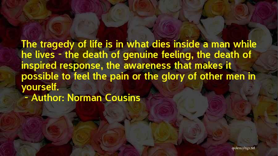 No Pain No Glory Quotes By Norman Cousins