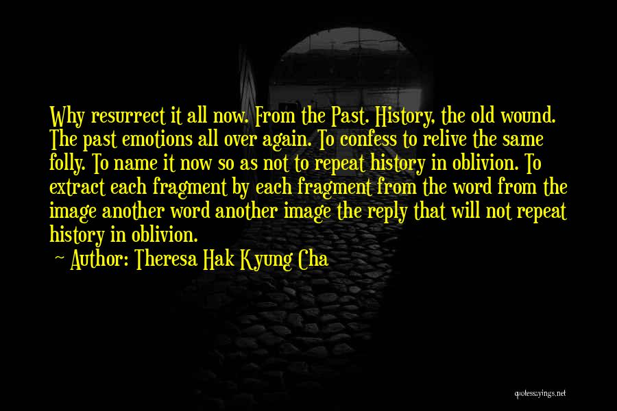 No Reply At All Quotes By Theresa Hak Kyung Cha
