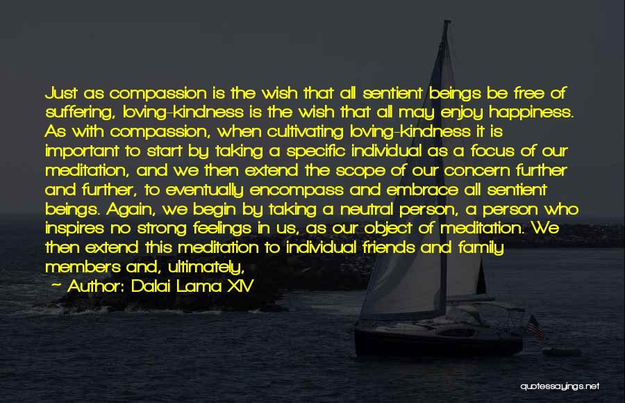 No Scope Quotes By Dalai Lama XIV