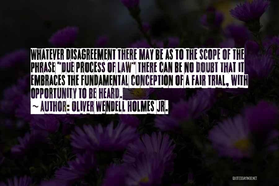 No Scope Quotes By Oliver Wendell Holmes Jr.