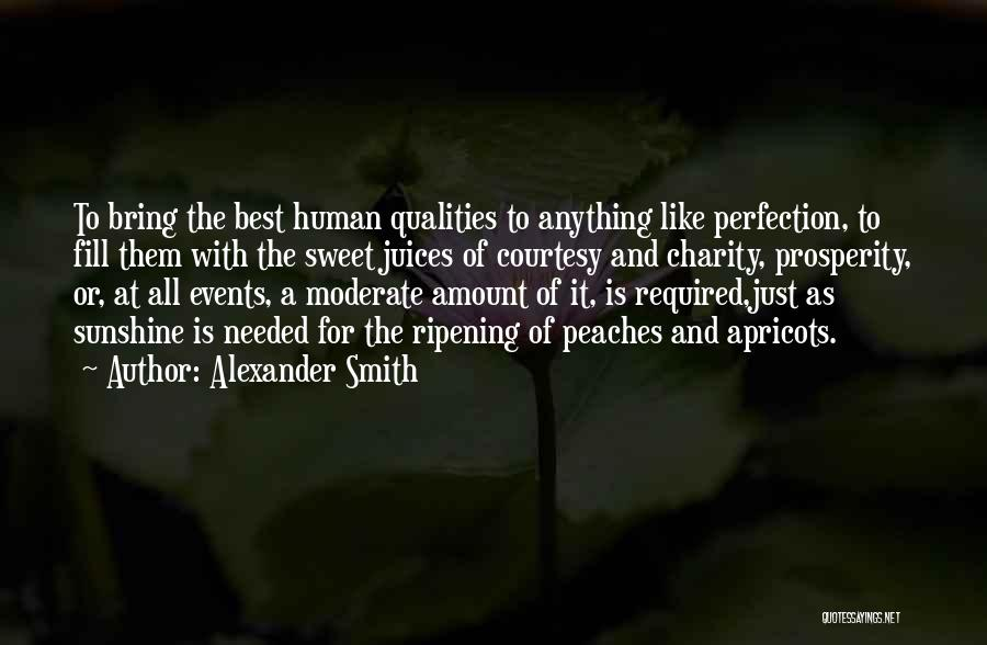 No Such Thing As Perfection Quotes By Alexander Smith